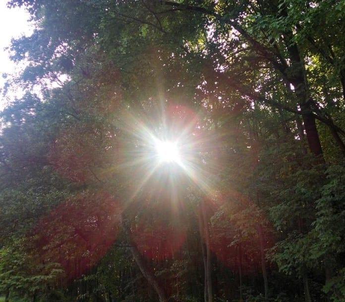 Light-shining-through